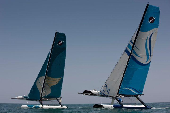 regate incentive en catamaran corporate entreprise voilier